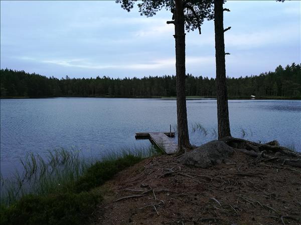 Vy över sjön med bryggan i förgrund