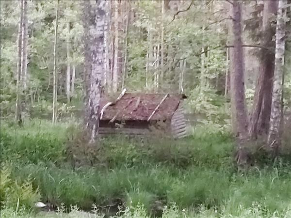 Vindskyddet på avstånd