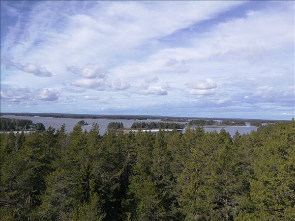 Utsikt från tornet